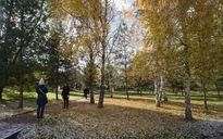 Ngắm tuyết rơi trong sắc thu vàng ở Moscow