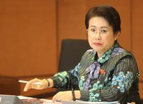 Bà Phan Thị Mỹ Thanh khiếu nại kết luận của Ủy ban Kiểm tra Trung ương
