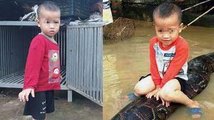 Cậu bé 3 tuổi cưỡi trăn gây 'bão' mạng: Phạt chủ nuôi nhốt trăn 3 triệu đồng