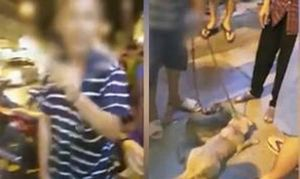 Chó bị chủ kéo lê trên đường phố Sài Gòn