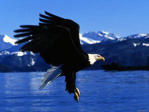 Alaska: 'Đứa con rơi' của Mỹ và hoài niệm buồn của người Nga