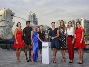Trực tiếp tennis WTA Finals ngày 1: Khởi đầu nảy lửa, mỹ nhân đại chiến