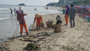 Bãi biển Vũng Tàu tràn ngập rác, thu gom 2 ngày chưa hết