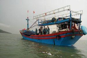 Nghệ An: Liên tiếp xảy ra các vụ ngư dân bị tai nạn khi lao động trên biển