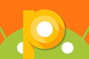 Google tung bản Android P xem trước cho nhà phát triển