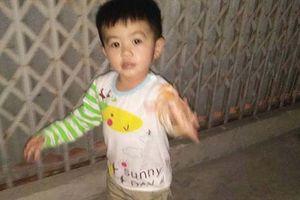 Đã tìm thấy bé trai 3 tuổi nghi bị bắt cóc ở Thái Bình