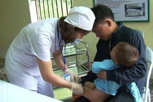 Lào Cai: 3 người chết vì chó dại, 1.000 ca phải tiêm phòng