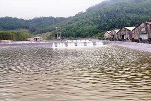 Phá rừng nuôi tôm tại TT-Huế: Kỷ luật nhiều cán bộ