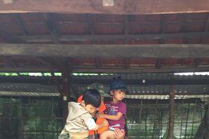 Gia Lai: 200 cán bộ, chiến sĩ ứng cứu nhân dân vùng lũ
