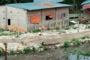 Vĩnh Phúc: Trang trại lợn ngang nhiên xả thải gây ô nhiễm môi trường