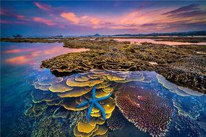 'Sắc màu của biển' giành giải nhất cuộc thi ảnh nghệ thuật Du lịch toàn quốc lần thứ 8