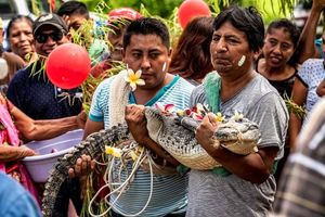 Kỳ quặc đám cưới của Thị trưởng Mexico và cá sấu