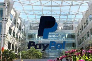 PayPal cáo buộc khách hàng đã qua đời 'vi phạm' hợp đồng