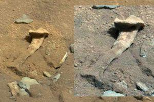 Bí ẩn về bộ xương dài gần 2m nghi của người ngoài hành tinh