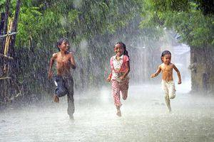 Nghe trong tiếng mưa