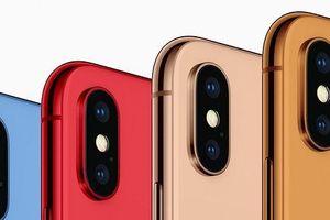 iPhone 6,1 inch 2018 sẽ có 5 màu nhưng không có màu đỏ