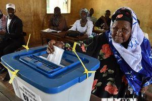 Người dân thờ ơ với cuộc bầu cử tại đất nước Mali