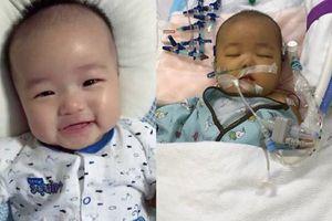 Người phụ nữ xa lạ hiến gan cứu sống bé 6 tháng tuổi