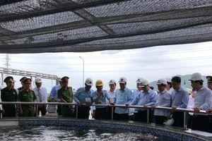 Thủ tướng Nguyễn Xuân Phúc đề nghị Formosa khẩn trương chuyển sang dập cốc khô