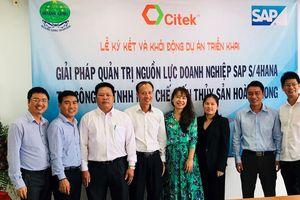 CITEK đưa giải pháp quản trị SAP S/4HANA vào Thủy sản Hoàng Long