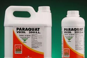 Ngộ độc thuốc diệt cỏ paraquat: Những cái chết ám ảnh