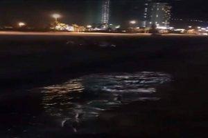 Đà Nẵng: Làm rõ nghi vấn lợi dụng đêm tối xả thải ra biển