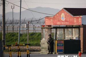 Triều Tiên hoãn khảo sát đường xuyên biên giới với Hàn Quốc