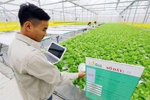Khả năng tiếp cận nông nghiệp 4.0 ở Việt Nam