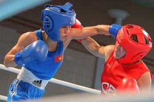 Việt Nam lần đầu tổ chức boxing nhà nghề