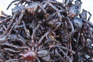 'Hết hồn hết vía' đặc sản nhện đen sì- rùng mình mà vẫn hút khách
