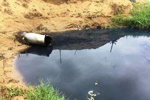 Hà Tĩnh: Dân cầu cứu xử lý môi trường ô nhiễm từ hồ tôm