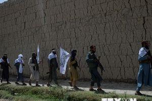 Afghanistan hy vọng Nga giúp thúc đẩy đàm phán hòa bình với Taliban