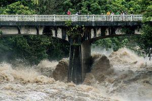 Siêu bão đổ bộ Hawaii, người gia cố nhà, người vô tư lướt sóng