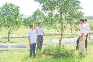 Huyện Thường Xuân tập trung xây dựng cơ sở hạ tầng theo tiêu chí nông thôn mới