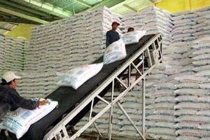 Đấu giá nhập khẩu 94.000 tấn đường theo hạn ngạch thuế quan 2018