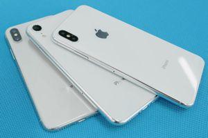 Apple 'vô tình' làm lộ hình nền và màu vỏ iPhone mới