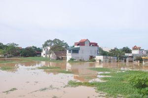 Thành phố Thanh Hóa di dời 827 hộ dân đến nơi an toàn