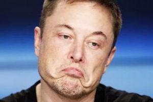 Tỷ phú xe điện Elon Musk: Thương trường rực rỡ, tình trường thảm thương