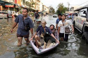Loay hoay ứng phó lũ lụt