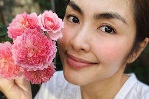 Phát thèm với vườn rau xanh mướt của Tăng Thanh Hà