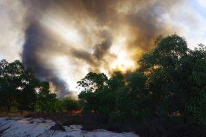 Quảng Bình: Dồn tổng lực chữa cháy rừng ven biển