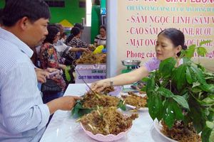Phiên chợ sâm Ngọc Linh lần thứ 12 thu về hơn 4 tỷ đồng