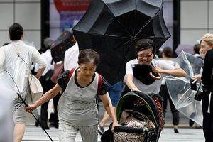 Lo bị siêu bão Jebi 'nuốt chửng', Nhật Bản phải sơ tán 1 triệu người