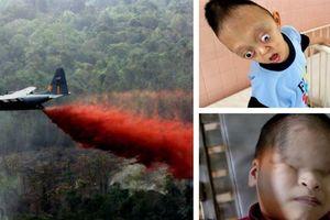 Báo Mỹ: Việt Nam yêu cầu Monsanto bồi thường triệu người