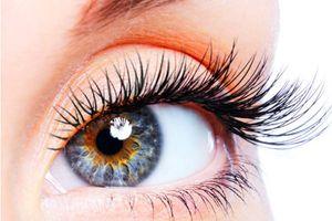 Suy giảm thị lực nghiêm trọng từ những thói quen không ngờ