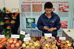 Đà Lạt: Quyết liệt ngăn chặn tình trạng 'rau, củ lạ'