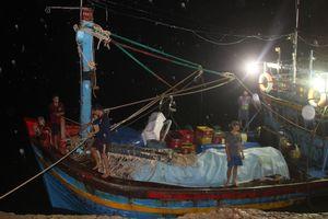 Tàu cá chìm, 10 ngư dân Bình Định chới với giữa biển