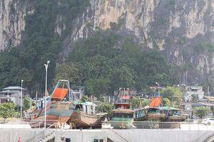 Phát hiện 5 tàu thủy sản khai thác hủy diệt trên vịnh Hạ Long