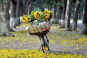 Hà Nội sang thu thời tiết đẹp