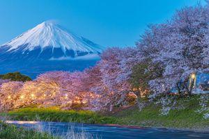 Chiêm ngưỡng Núi Phú Sĩ - linh hồn của du lịch Nhật Bản